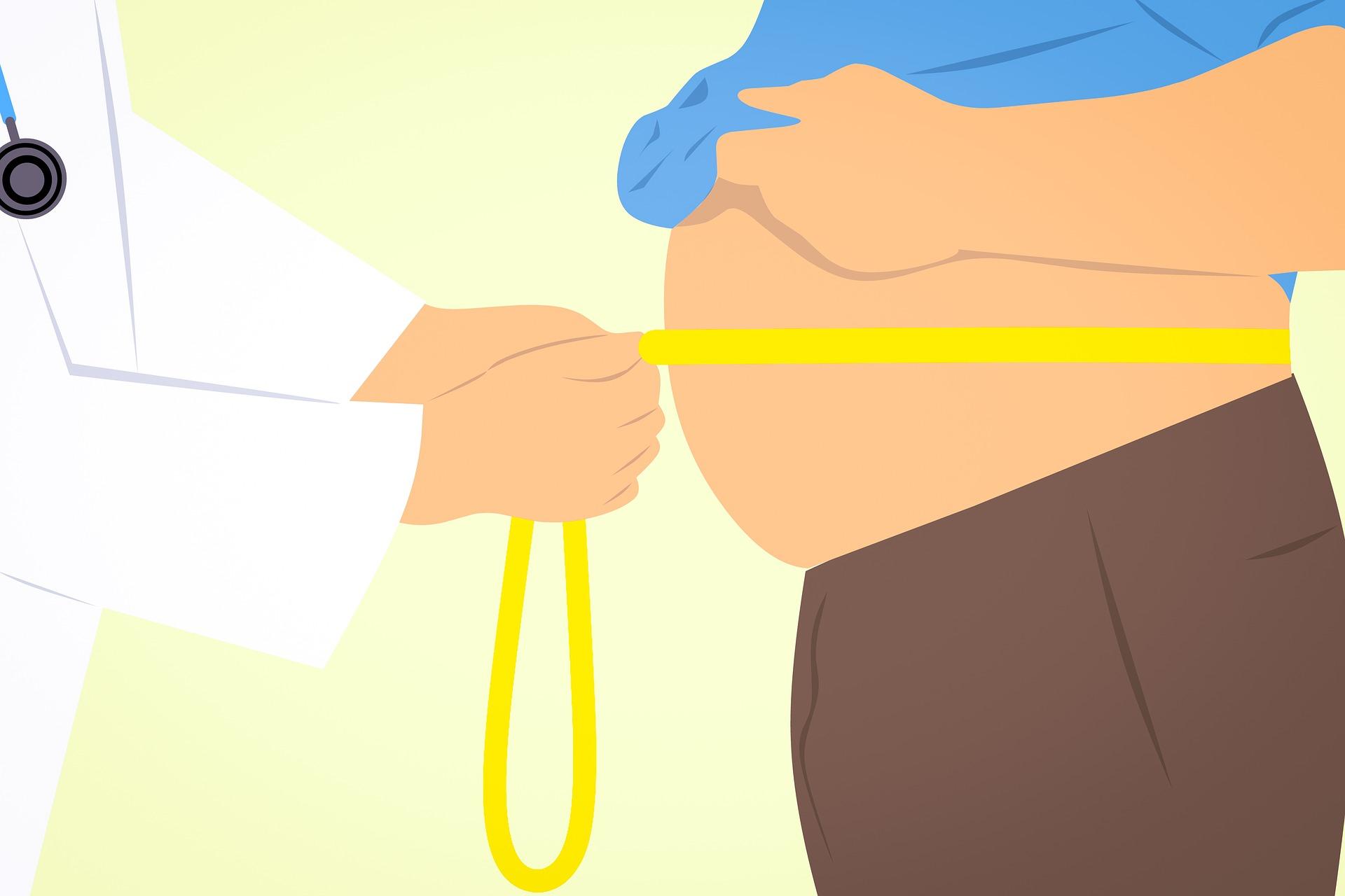 まだまだ続く「糖質制限ダイエット」ブーム