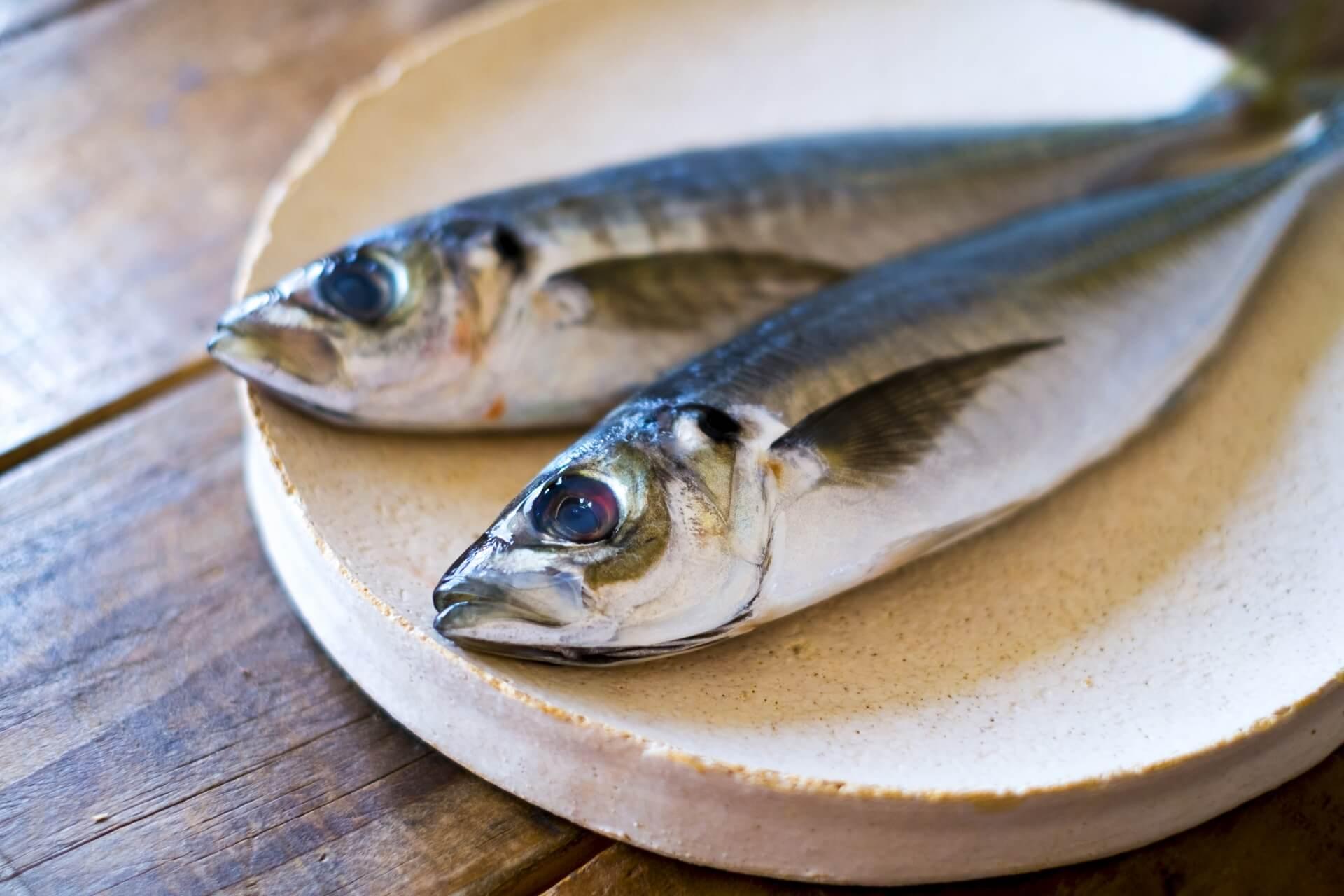 青魚に多く含まれる健康成分DHA・EPAって