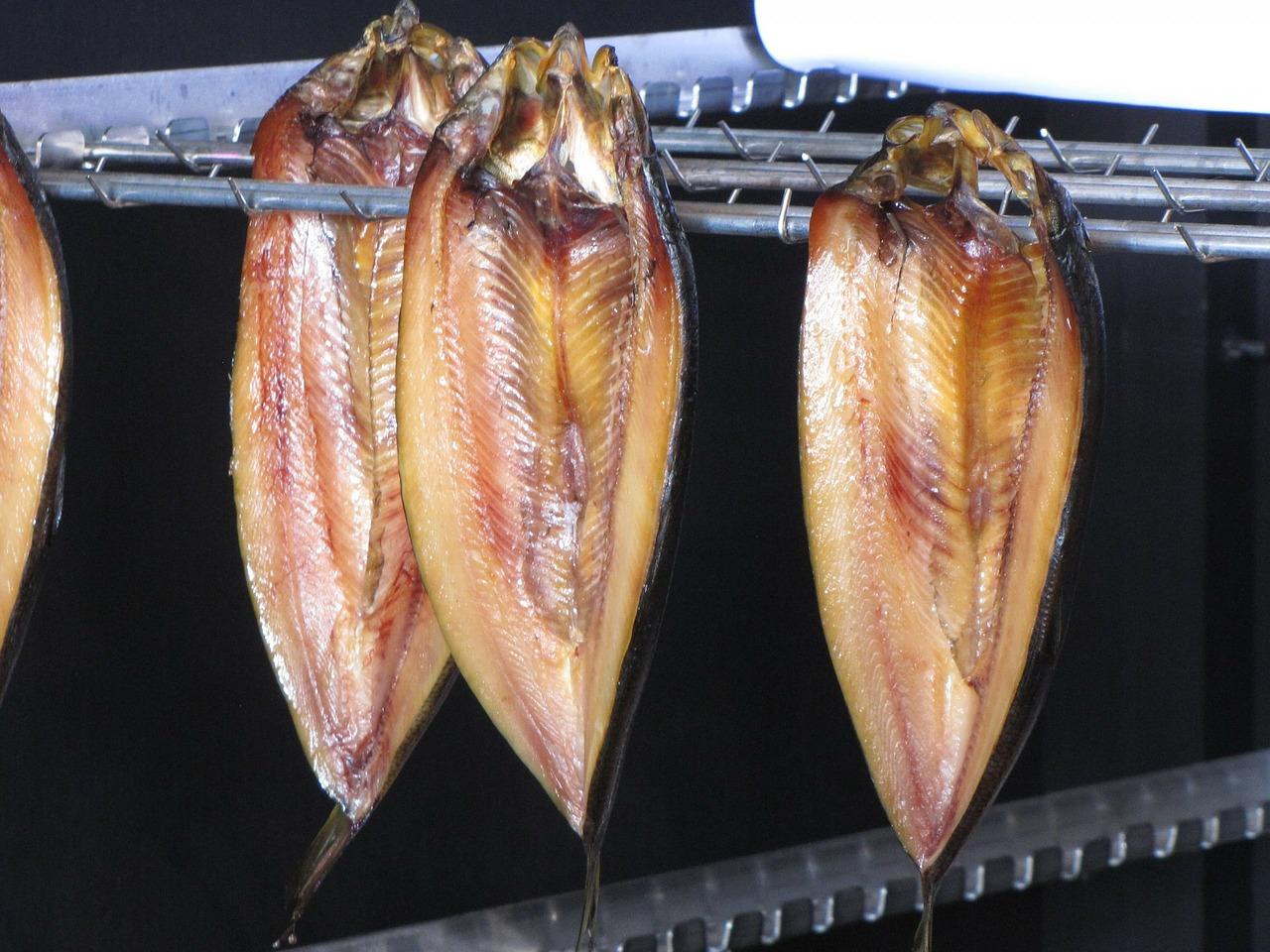 青みの魚を食べることの重要性を改めて見直しませんか?