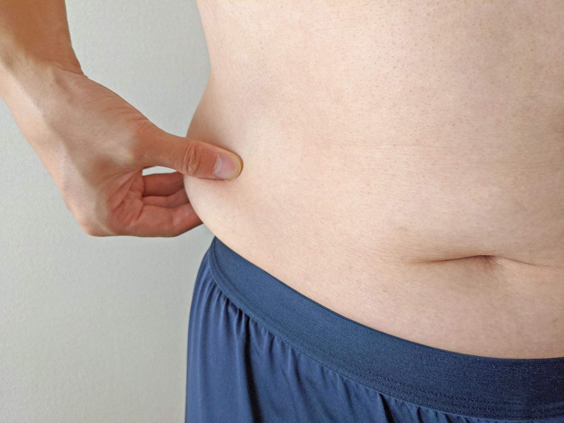 マウスの高脂肪食誘発性肥満に対する南極オキアミリン脂質(KOPL)の効果